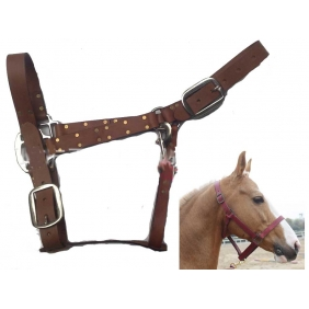 Wholesale Leather Horse Bridle Halter Headstall for Riding Competitions